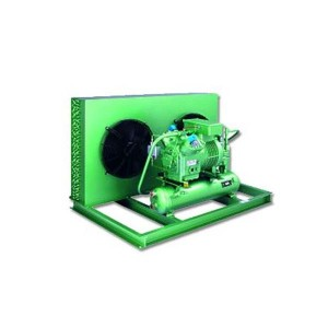 Condensing unit LH135E/S6J-16.2 Y BITZER